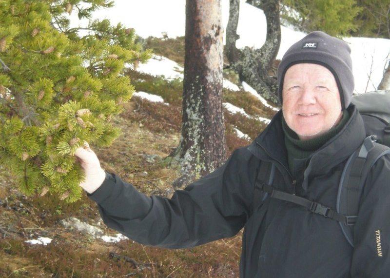 Niels Arp-Hansen